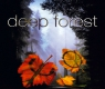 Deep Forest «Boheme» 1995 (Sony)